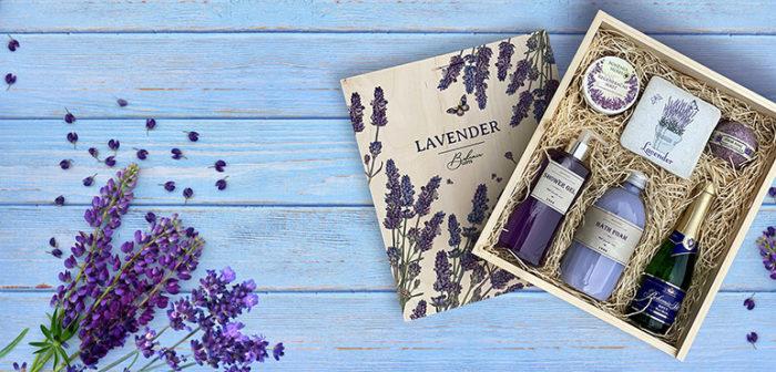 BG-Lavender-banner-dlouhy kopie
